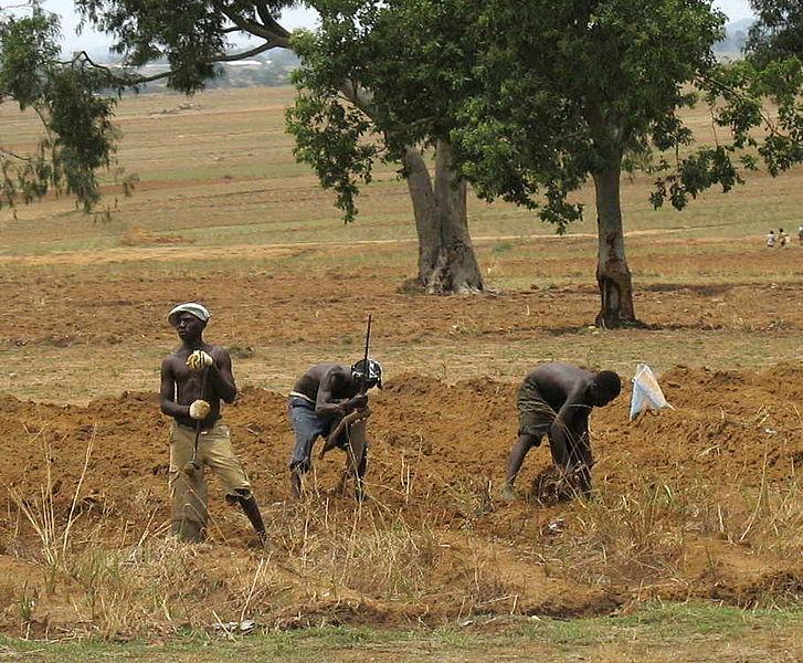 727px-Nigerian_farmers