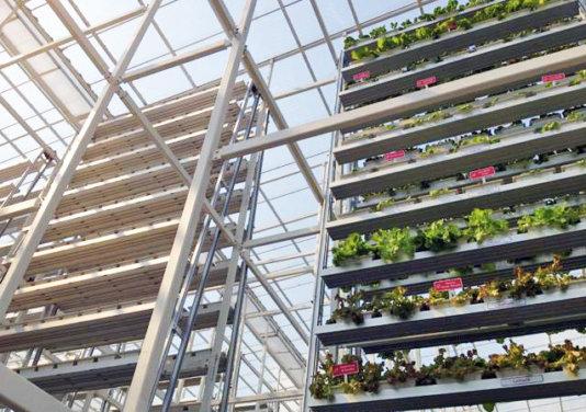 sky-greens-singapore-worlds-first-vertical-farm