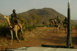 sudanese forces