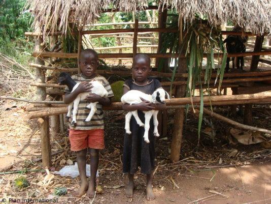 Ziegenprojekt_Uganda1