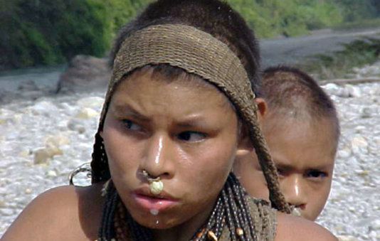 Uncontacted Nanti could be decimated by plans to detonate thousands of explosive charges and allow hundreds of workers to flood onto their land. © Anon
