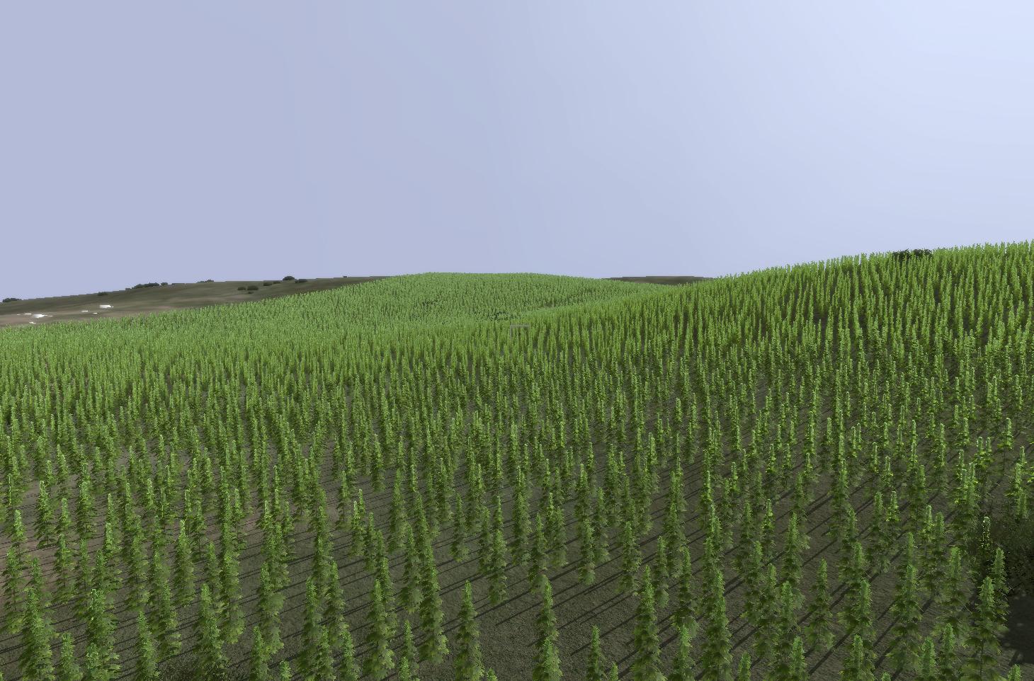 hemp plant farming