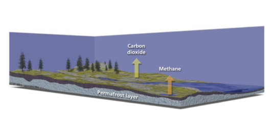Greenhouse Gas Release from a Warming Arctic. The thawing of permafrost is one of three powerful feedbacks by which global warming amplifies itself.