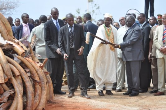 Photo of the former president Mwai Kibaki torching ivory in 2011.