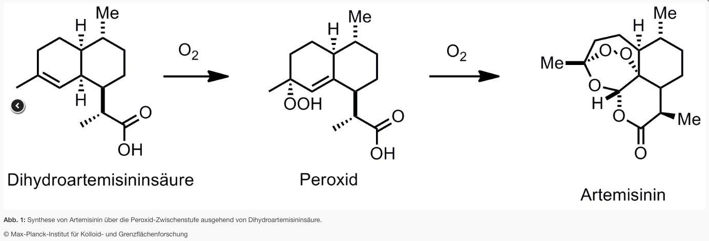 synthese von artemisinin