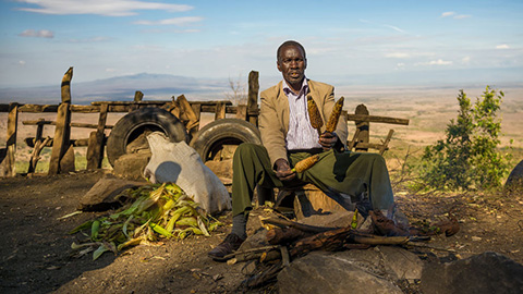 Narok County, Kenya: Farmer is selling maize on the Kamandura Mai-Mahiu Narok Road near the Great Rift Valley