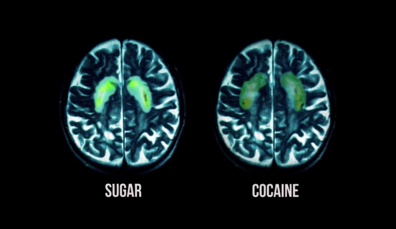 sugar cocaine_fed up