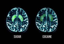sugar cocaine_fed up