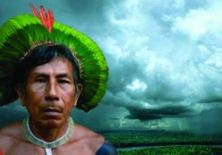 Avaaz_Amazon-indigenous