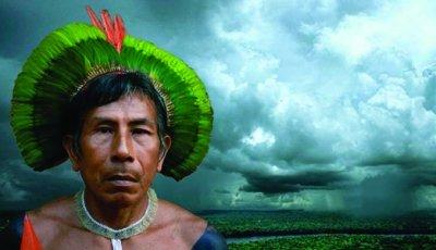 Avaaz_Amazon-indigenous