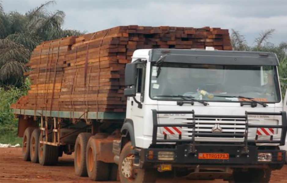 Because of strict regulation and surveillance in forest exploitation areas, loggers have changed strategy to illegally take wood out of the forest. They go right into the hinterlands cut prohibited species, saw into plank and mix with legal wood to transport to the city or better still traffic the illegal wood in cargo containers.