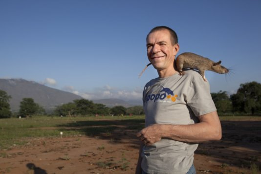 APOPO founder Bart Weetjens holding a HeroRat.