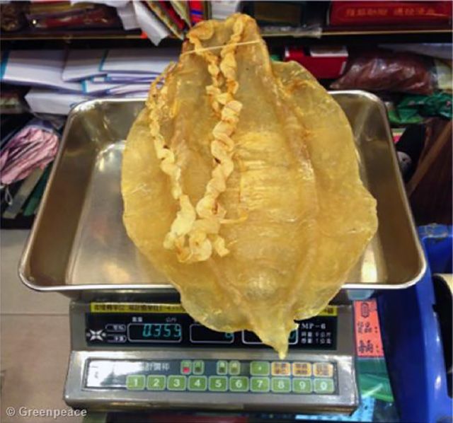Totoaba bladders in the packet as they are sold at the black market in Hong Kong.