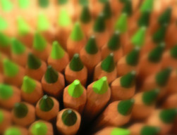 sharp-pencils-green