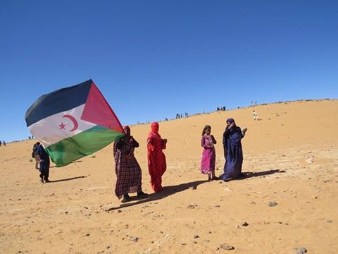 A woman hold the Western Sahara flag in the desert
