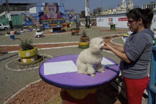 Integration Plaza. This was an empty lot until Occupy Your Street converted it in a plaza. A woman shears her dog in one of the tables of the place.