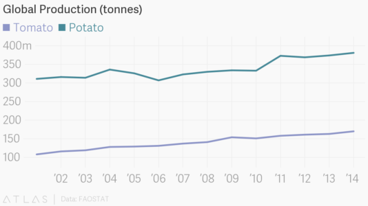 Global production of tomatoes and potatoes.