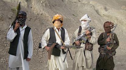terrorist taliban