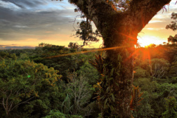 climate change yasuni national park