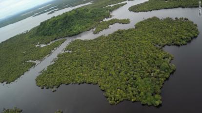 bangladesh mangroves