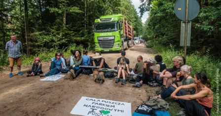 defendtheforest_poland