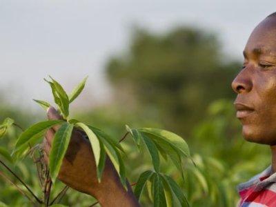 farmafrica