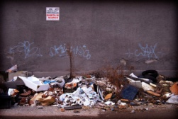 italy eco crime