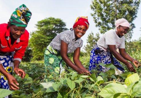 african femal farmer