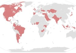 world map paradise papers