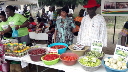 """Under a """"one village, one dam policy"""", the production methods of more than half of Ghanaians working in agriculture are aimed to be made more efficient and possible all year-round."""