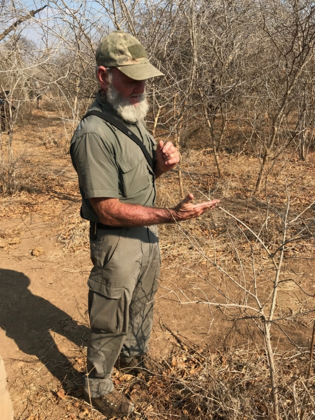 e5182c9aff986 It s about the absolute will to protect the endangered animals and to hunt  down poachers