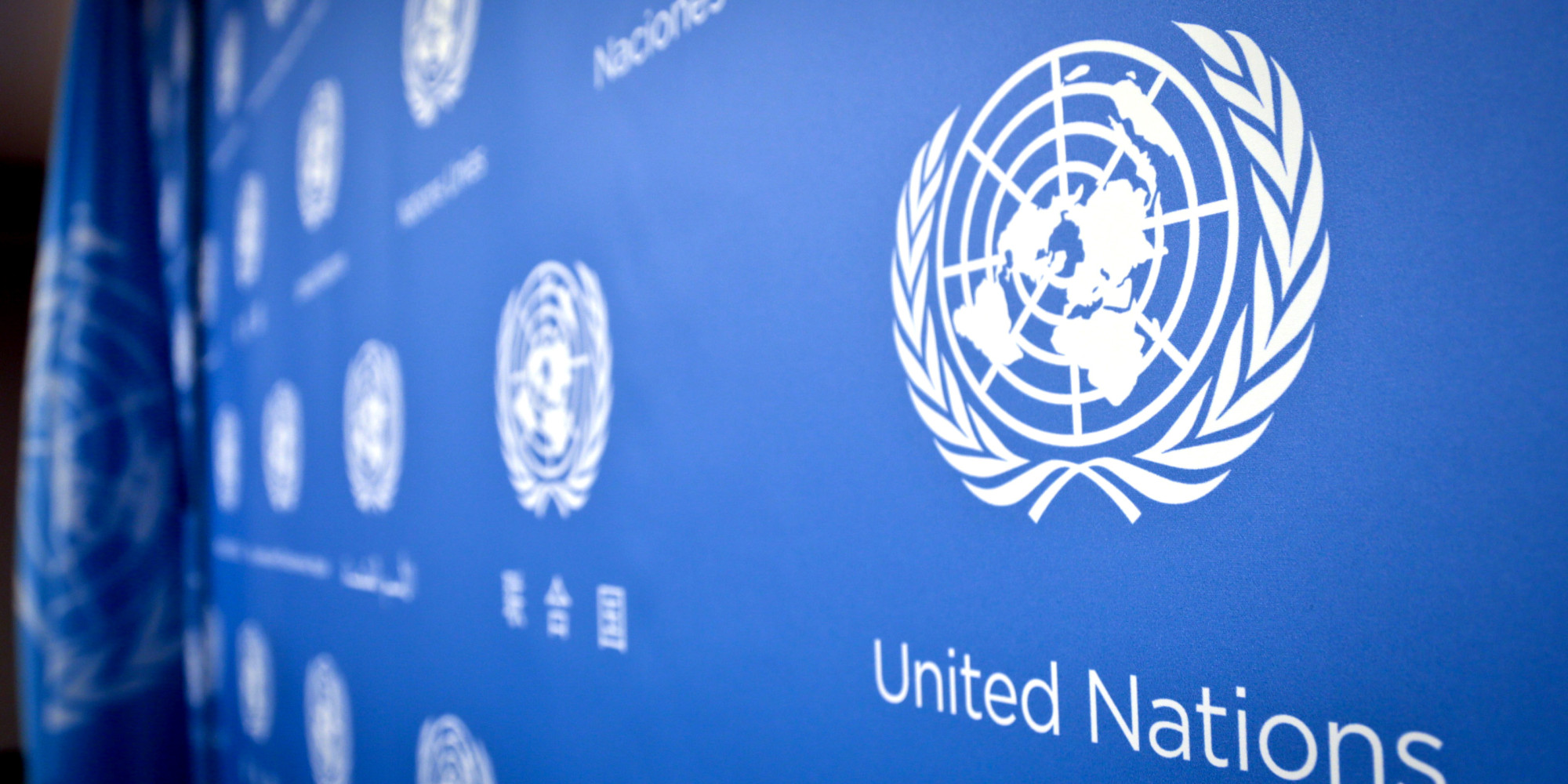 Will the real UN please stand up? | FairPlanet