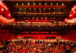 berlinale auditorium