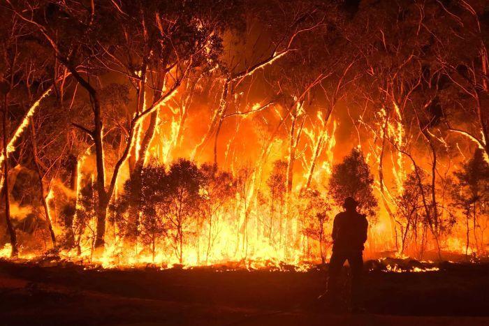 Australia-Fires-2020