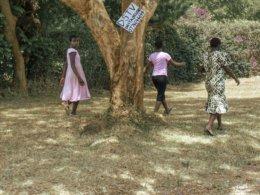zimbabwe torture