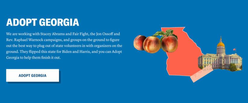 adopt-georgia-fairplanet-vote-save-america